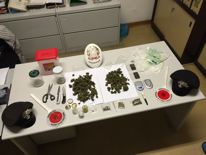 In casa auto rubate e serra di marijuana