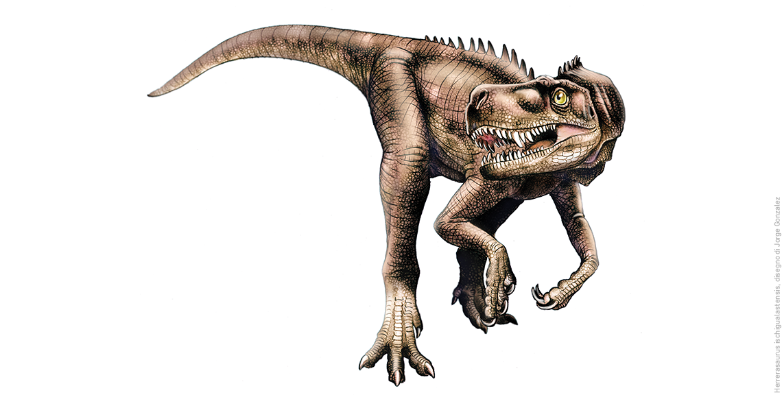 Jurassic park era all'Aquila, scoperte orme di dinosauro gigante
