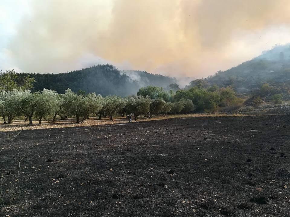 Incendi Morrone: due Canadair dalla Francia
