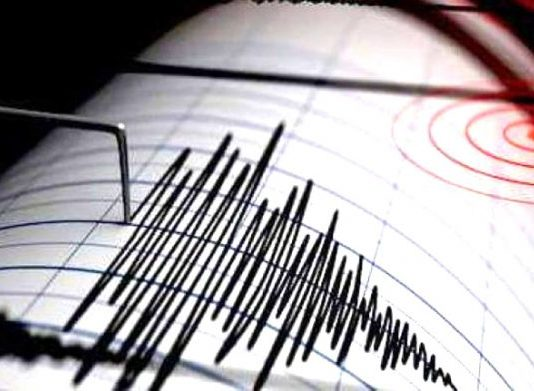 Terremoto: sismografo (Il Martino - ilmartino.it-)