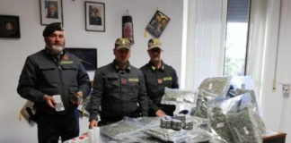 sequestrati 30 chili di marijuana ed hashish GdF Montecosaro