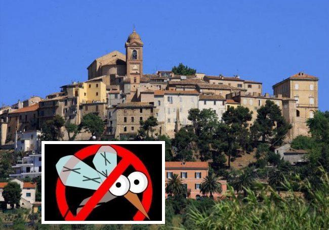 Monteprandone, disinfestazione (Il Martino - ilmartino.it -)