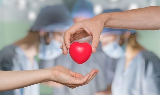 Donazione organi (Il Martino - ilmartino.it -)