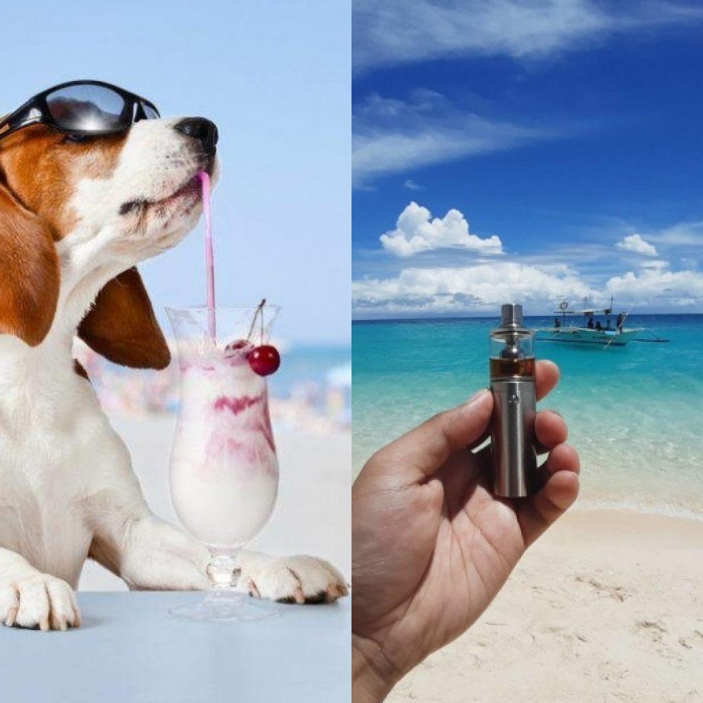 Svapare e cani in spiaggia (Il Martino - ilmartino.it -)